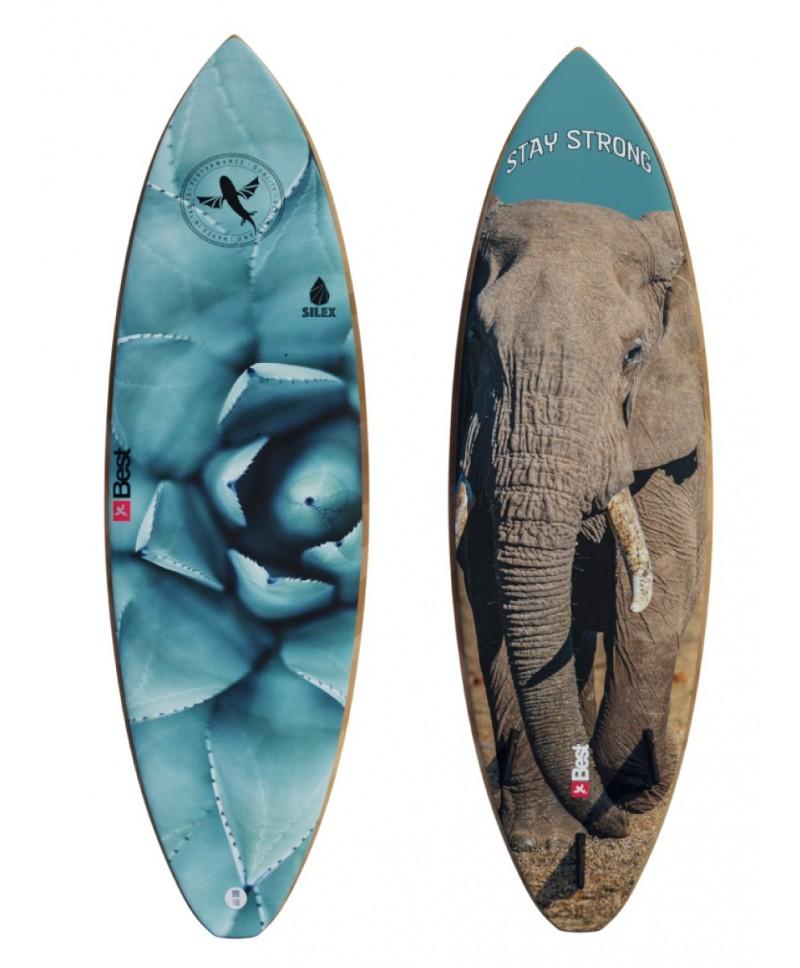 Kite lentos Elephant