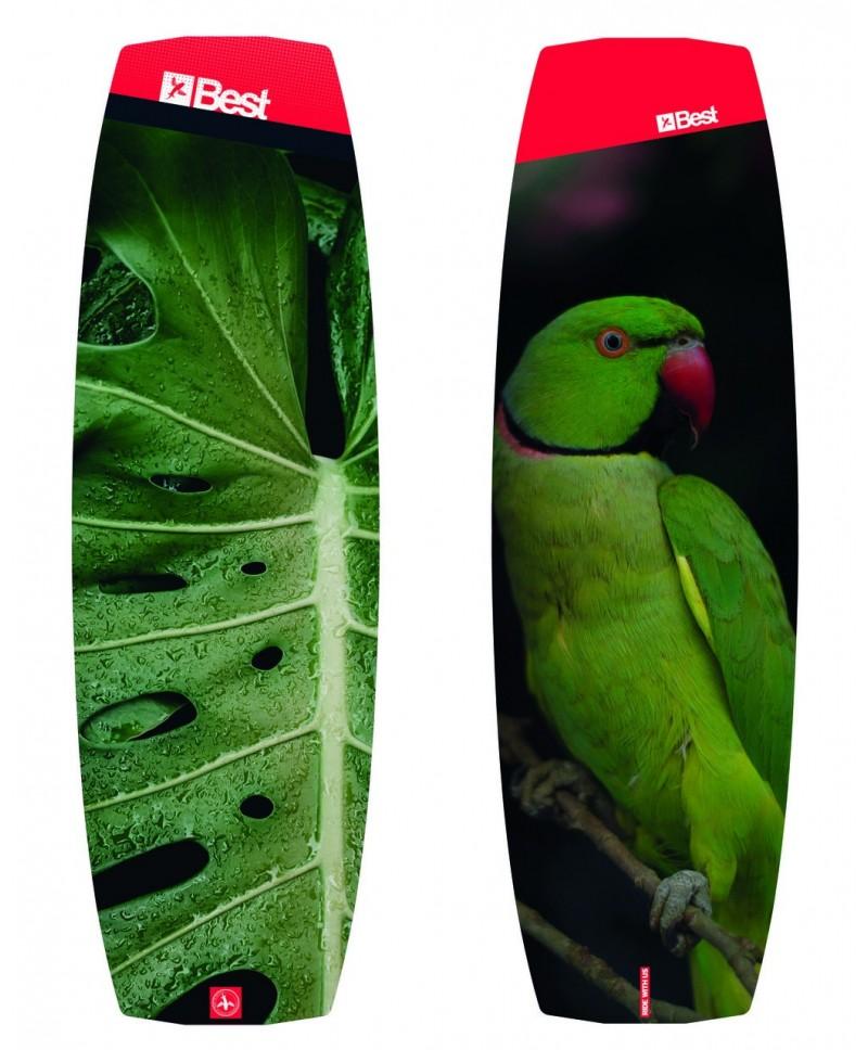 Kite lentos Parrot