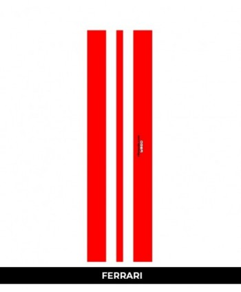 Kite lentos Kaito lenta lengvam vėjui RL lightwind